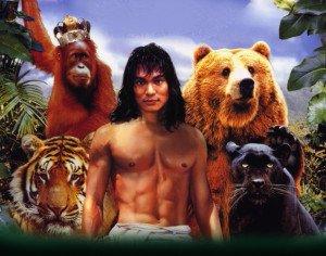 junglebookcat